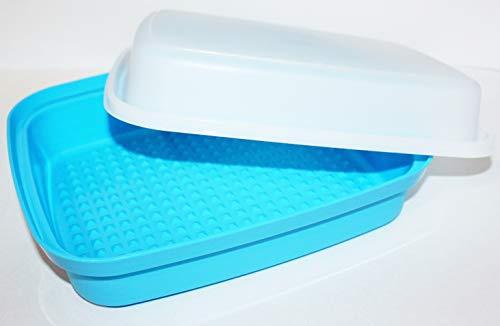 Tupperware Jr. Season Serve Marinater with Built-in Grids Blue & Sheer