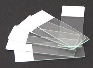 Microscope Slides :: Microscope Colored End Label Microbiology Slides White pk of 72 by Scientific Equipment Of Houston