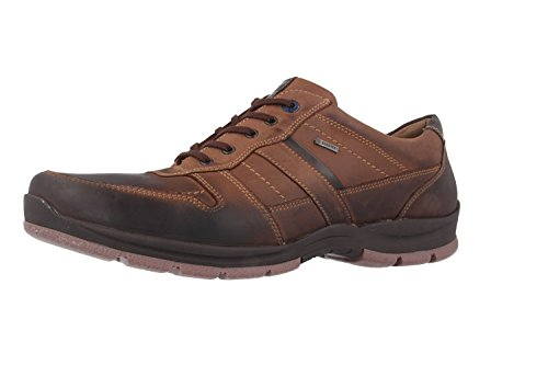 FRETZ mEN-sprinter-homme-marron-chaussures en matelas grande taille
