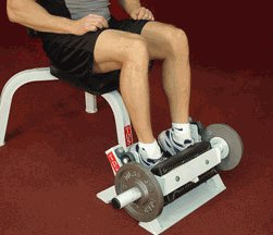 Tibia Dorsi Calf Machine