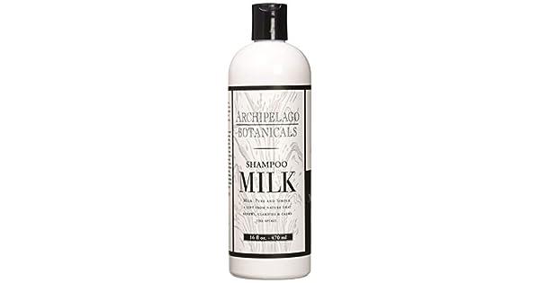 Amazon.com: Archipelago - Champú de leche Botanicals de 453 ...