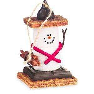 S'mores Original Boy Scout's Set Of 2 Ornaments (Cannon Falls Smores)