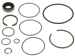 ACDelco 36-348407 Professional Power Steering Pump Seal Kit with Bushing, Seals, and Snap Ring ()