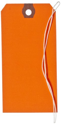 Aviditi G12052C 13 Point Cardstock Pre Stung Shipping Tag, 4-3/4