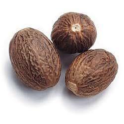 Image Gallery Nutmeg Nut