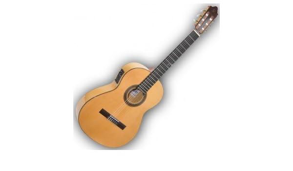 Campamentos Ce500s-Guitarra Flamenca Electro: Amazon.es ...