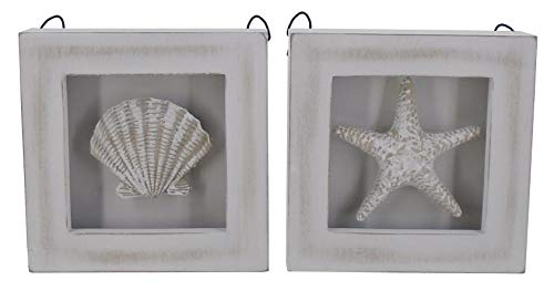 (Chesapeake Bay 2 Open Front Sealife Shadow Boxes Starfish and Pectin Clam Shell 70058 5.9 Inches Square)