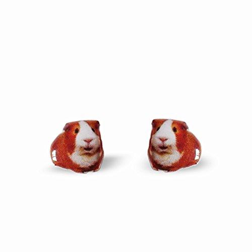 Guinea Pig Earrings - Animal Stud Earrings - Funs Animal Stud Earrings - Pet - Earrings Guinea Pig