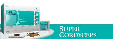 Super Cordyceps Herbal Mushroom Supplement - 5 balls (750 mg) x 60 packets by Mitsuwa