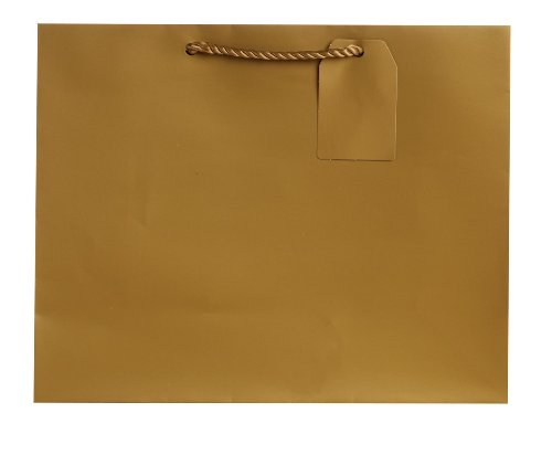 "Jillson Roberts 6-Count Large 12.5"" x 10"" x 5"" Gift Bags Ava"