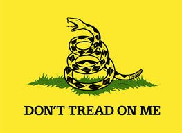 amazon com 6 ft don t tread on me bicycle safety flag with rear