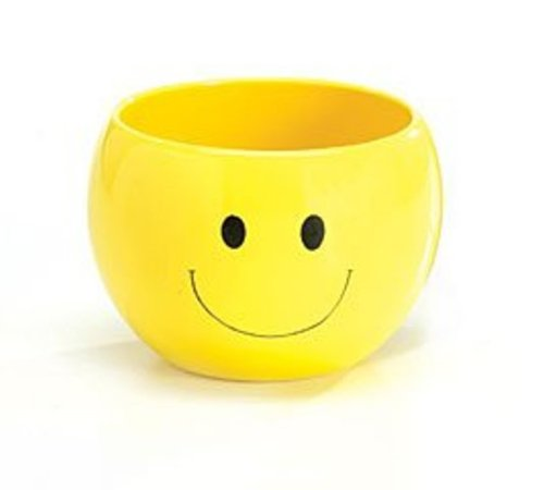 Adorable Smiley Face Happy Planter