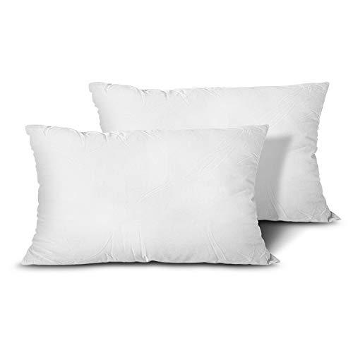 EDOW Throw Pillow Inserts