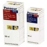 Panacur 10% x 100ml Liquid for Cats & Dogs