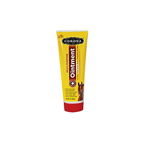 Corona Ointment Size Container Tube