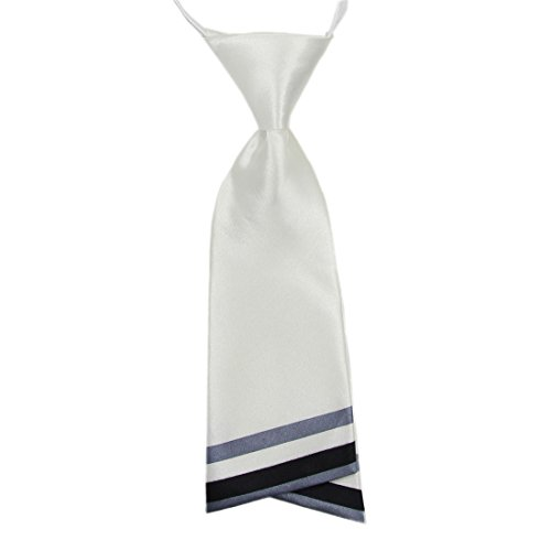 HANERDUN Womens Bowtie Ladies Pre Tied Silk Necktie Costume Accessory Gift Idea ()