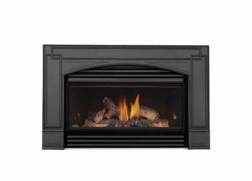 Napoleon Roxbury 3600 Natural Gas Fireplace Insert - Package 1