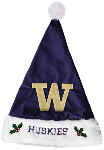 FOCO Washington 2015 Solid Santa Hat by FOCO