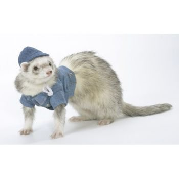 Marshall Ferret Jean Jacket by Marshall Pet Products
