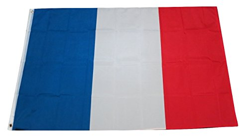 TrendyLuz Flags France French National Country Flag 3x5 Feet Printed Flag with Grommets -