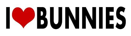 i Love Bunnies STICKER DECAL VINYL BUMPER Cool Gift DÉCOR CAR TRUCK LOCKER WINDOW WALL NOTEBOOK