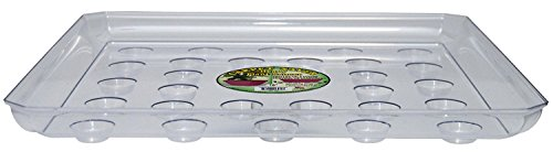 - CWP SQDS-1600 Heavy Gauge Footed Square Carpet Saver Saucer, 16-Inch by 16-Inch, Clear