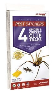 J T Eaton 076706844002 Spider and Cricket Glue Trap (Pack of 5), White Box by J T Eaton