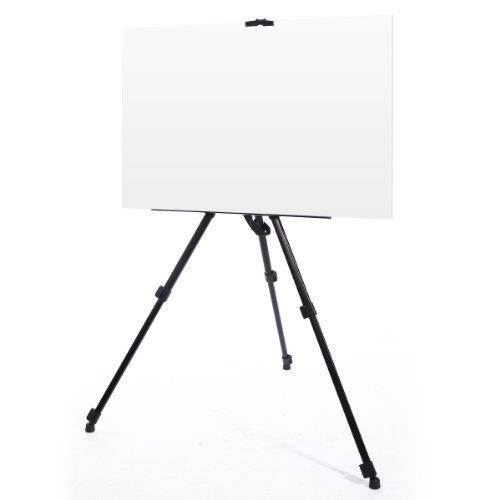 Adjustable Folding Tripod Easel Telescopic Display Art Painting Stand w Carry Case Hold 12kgs