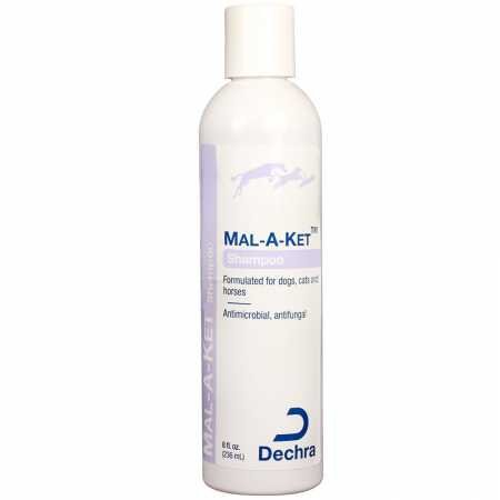Dechra Mal-a-ket Formulated for Dogs, Cats and Horses Antibacterial and Antifungal Shampoo 8oz (Cat Dermapet Shampoo)