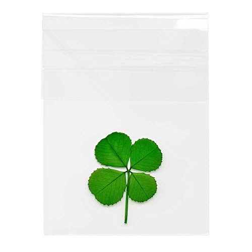 Clovers Online Genuine Preserved Four Leaf Clover in Cello Sleeve ()