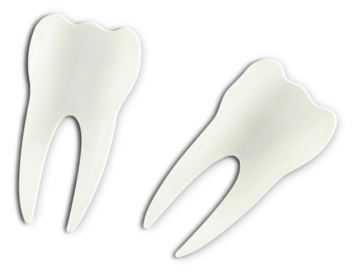 Fred and Friends Tooth Piks- Pack of 24 Piks