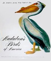 Audubon's Birds Of America (The Audubon Society Baby Elephant Folio)