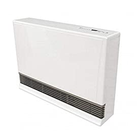 Rinnai EX38CT Direct Vent Wall Furnace 1 Rinnai EX38CTN Direct Vent Wall Furnace - Natural Gas Input Range 13,200 - 38,400 BTU/hr Capable of heating your whole home or complementing your existing heating system (Heating area varies by geographic region and location of install within the home)