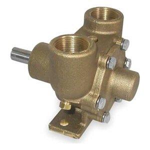 (Dayton 3ACB2 Pump, Pedestal, Inlet/Outlet 1 In)