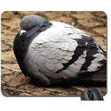(Fat Pigeon Mouse Pad, Mousepad (Birds Mouse Pad) )