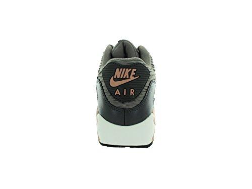 Nike Wmns Air Max 90 Lthr - Calzado Deportivo para mujer grau