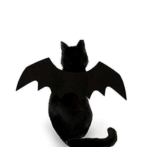 lightclub New Halloween Pet Dog Puppy Cat Black Cool Bat Wing Make Up Costumes Clothes Black -