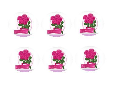 12ct Congratulations Pink Rose Bouquet Edible 3inch Large Cupcake/Cookie Image Kit