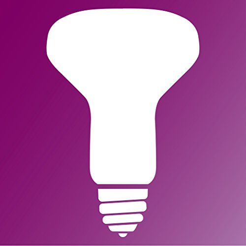 Philips Indoor R20 Flood Light Bulb: 2600-Kelvin, 45-Watt, Medium Screw Base, Soft White, 12-Pack by Philips (Image #1)