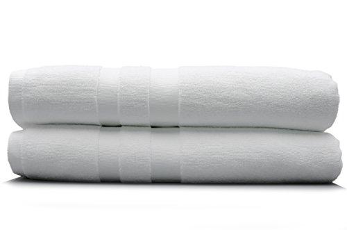Laguna Blue Antibacterial Microfiber Bath Towels (2-Pack) White 30