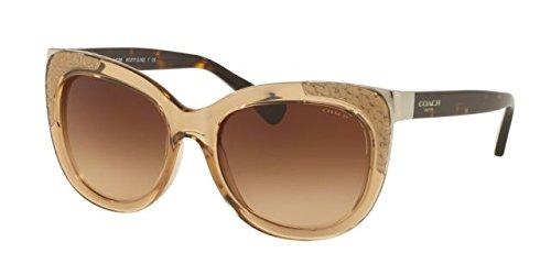 COACH Women's 0HC8171 Crystal Light Brown/Dark Tortoise - Sunglasses Usa Coach