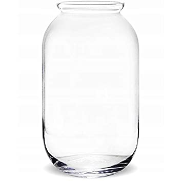 Solavia Large Glass Terrarium Table Vase 50 Cm Cylinder Container
