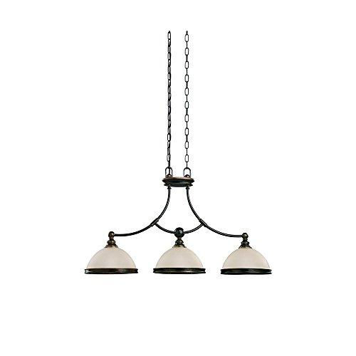 Sea Gull Lighting 66330-715, Warwick Bowl Pendant, 3 Light, 225 Total Watts, Bronze ()