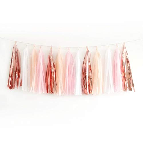 20PCS Shiny Tassel Garland Tissue Paper Tassel Banner,Table Decor,Tassels Party Decor Supplies for Wedding,Birthday,Bridal/Baby Shower,Anniversary,DIY Kits - (Rose Gold/Peach Color/Light Pink/White)