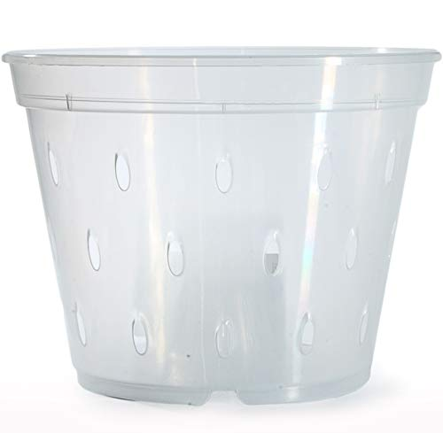 Top recommendation for orchid pot plastic 4
