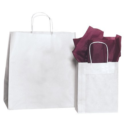 Box Partners BGS107W 14 in. x 10 in. x 15 .50 in. White Paper Shopping Bags B001LNCUSA