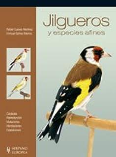 Jilgueros y especies afines (Pajaros / Birds)