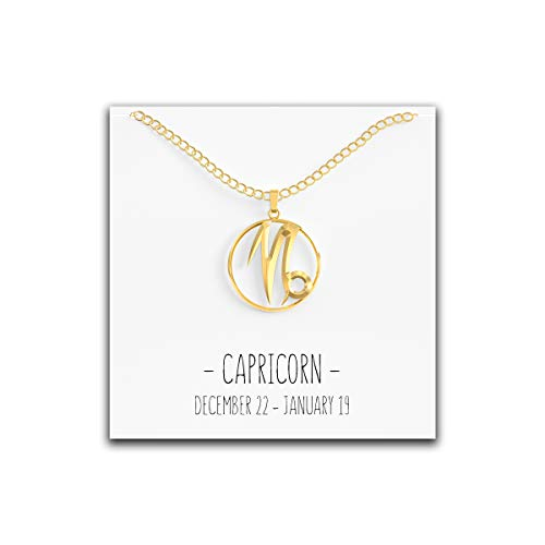 (Happy Kisses 12 Constellation Zodiac Necklace - Astrology Horoscope Pendant - Silver or Gold with Message Card - Birthday (Capricorn Gold))
