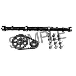 1984 Cam Kit (Chevrolet 350 Cam Kit 1981 1982 1983 1984 1985 camshaft lifters timing set)