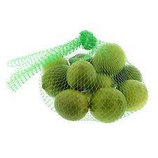 "15"" Reusable Mesh Nylon Netting for Vegetables Produce Toys 100 pcs./bundle (Green)"